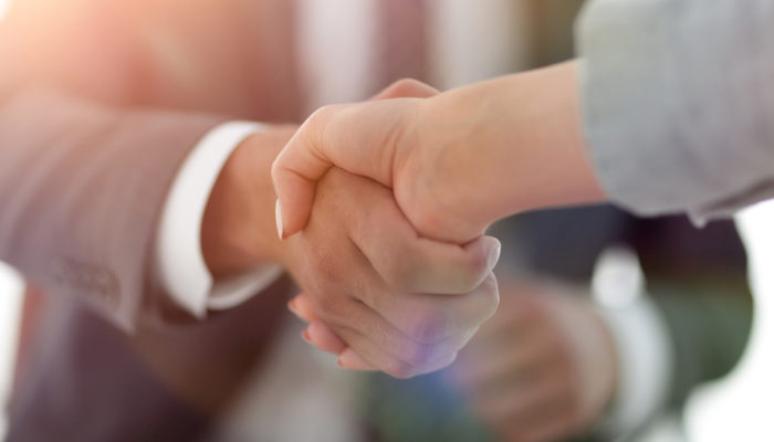 Business partnership agreements